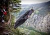 vol en wingsuit de Corliss